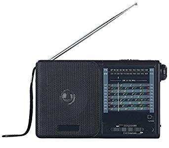auvisio radio analog analoger 20 band weltempf nger mit fm starkes radio. Black Bedroom Furniture Sets. Home Design Ideas